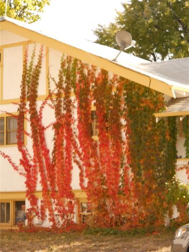 House near DU