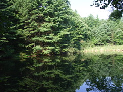 Prange Pond