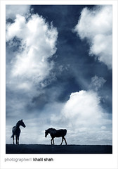 Fantasy (khalilshah) Tags: blue pakistan horse clouds explore instantfave outstandingshots superaplus aplusphoto superhearts excellentphotographerawards thatsbostin