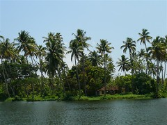 Alleppey (Dream, Plan, Travel, Repeat) Tags: india kerala alleppey