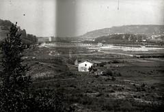 1900-1950