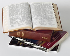 Book Of Mormon Scriptures