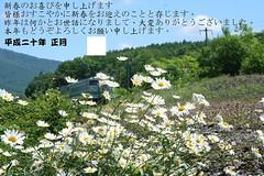 年賀2008_1 (2)_調整大小.JPG