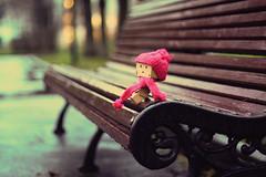 Wet Autumn (0905ru) Tags: winter hat scarf toy robot box helmet banner cap header cyborg bonnet ltd throw muffler streamer cravat kerchief amazoncojp boxman revoltech danboard bokehhearts