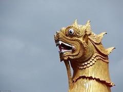I am dragon, hear me roar