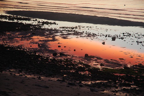 Reflections in the mud flats at Ellis Landing Beach