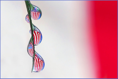 drops of old glory