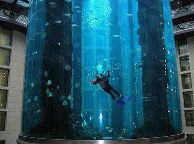 cylindrical aquarium4