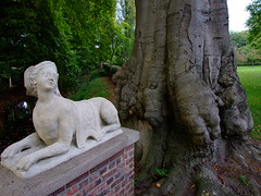 vertrumte Chimre (xmyrxn) Tags: sculpture house tree statue sphinx haus skulptur mansion manor baum mnsterland stamm muensterland rhede herrenhaus chimre mischwesen xmyrxn tencking
