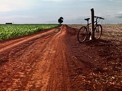 (leo.eloy) Tags: road travel field bike brasil corn alone bicicleta adventure estrada viagem campo terra 2010 aventura milho vazio p45