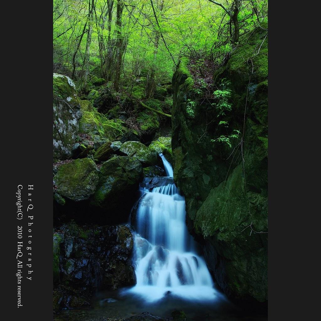 New Green & Small Waterfall *