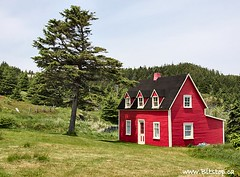 Little Red Cottage (Karen_Chappell) Tags: windows red summer house tree green tourism grass newfoundland landscape geotagged cabin scenery cottage scenic sunny nfld torscove irishloop avalonpeninsula thecribbies geo:lat=47215629 geo:lon=52841856