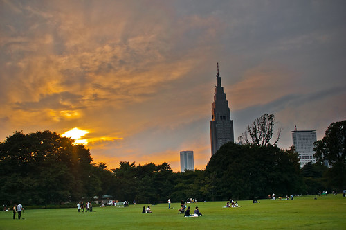 NTT Tower sunset views from Shinjuku Gyoen
