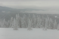 20100108-IMG_6174.jpg (Rafal Kubik) Tags: winter snow mountains forest landscape beskidy beskidzywiecki
