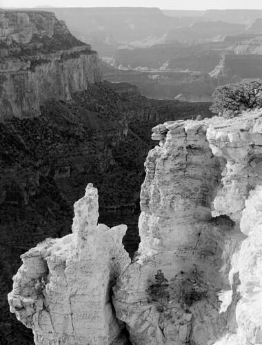 Near Kaibab Trail, Grand Canyon B/W, 2006