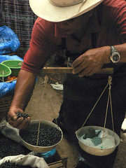 Weighing the food in the market (purplespace) Tags: food lake scale america beans hands hand market guatemala markets central dry bean eat scales local measure weigh centralamerica panajachel weighing measuring weighingscales lakeatitcan atitcan