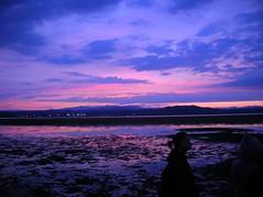 from dusk to dawn (haga kure) Tags: vienna history natural tidal adriatic isonzo hagakure quarantia