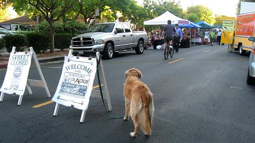 entrance to Los Altos Thursday evening market