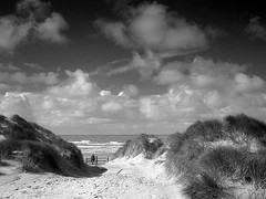 path to the beach - formby - england (~ paddypix ~) Tags: sea sky blackandwhite nature clouds photoshop picasa moodyblues ukandireland iusedpicasa