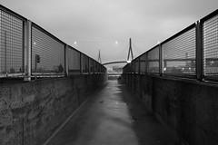 Der Weg (kagamiyama) Tags: longexposure port germany lights harbor hamburg sigma hafen dp1 dp1s