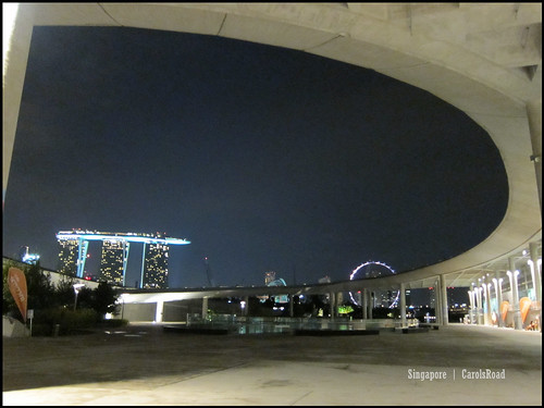 2010-10-31 新加坡 Singapore_37
