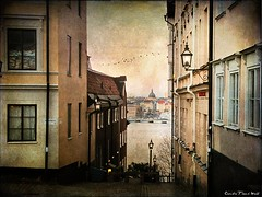 Katarina Kyrkobacke (Milla's Place) Tags: city buildings sweden stockholm sdermalm textured memoriesbook tatot skeletalmess magicunicornverybest thelittlebookoftreasures
