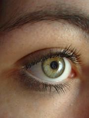 I-spy (CaptiveInnocencePhotography) Tags: iris macro green eye me yellow self lashes eyebrow