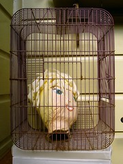 Head in a cage