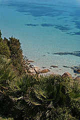 Lazzaretto Beach (sandropatrizia) Tags: sardegna sea summer beach nature italia mare sardinia estate natura palma spiaggia alghero lazzaretto sandropatrizia