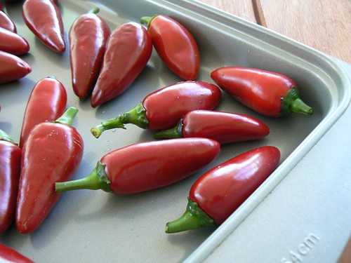 black hungarian peppers