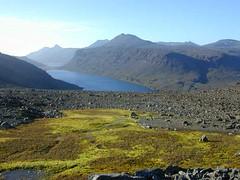tourbire (souille) de l'archipel des Kerguelen (jardin.lautaret) Tags: voyage geotagged kerguelen tourbire stationalpinejosephfourier geo:lat=49329597 geo:lon=7018753 souilles
