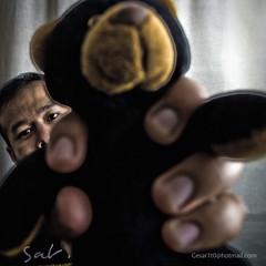 Da 325 22/06/2010. (Cesar1t0) Tags: bear portrait people selfportrait male canon photography oso cub photo foto retrato autoretrato 365 fotografia hombre peluche photograpy osito felpa