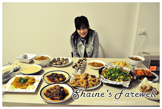 Shaine's Farewell Dinner: Shaine