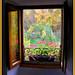 La ventana (Carlos Salazar Herrera)