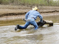 13 WS Wading through canal waters to log (Wrangswet) Tags: wranglers swimmingfullyclothed wetjeans wetmen wetboots wetladz wetcowboy swimminginjeans wetcowboyboots wetcowboyhat wetwranglerjeans meninwetjeans guysswimminginjeans