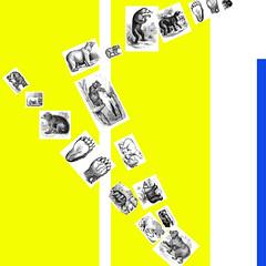 btrap-row2.jpg