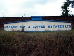 Tea estate (litrate) Tags: tea malawi teaplantation thyolo