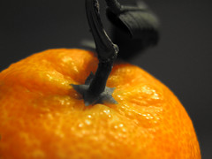 Orange. (Thumbnail)