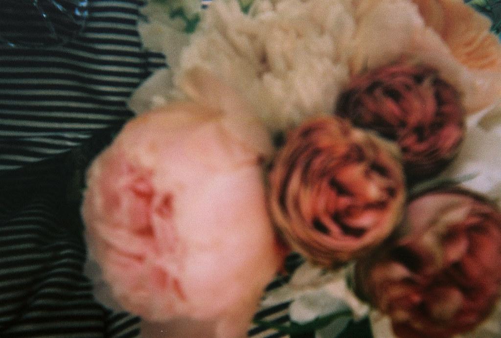 flowers lap