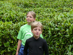 Cornwall - Glendurgan Garden - June 23, 07 - 10.jpg