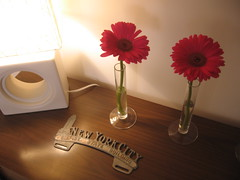 IMG_6865 (All About Eve) Tags: flowers red fleurs interiors gerberas intrieur