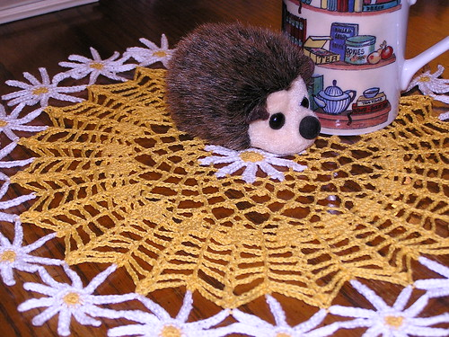 Hedgie & Daisies