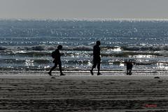 Silhouettes ( photopade (Nikonist)) Tags: france macintosh mac nikon silhouettes merdunord picardie fortmahon nikond300 nikonvrdx55200456edg