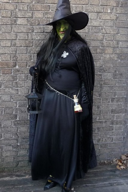 2010 Witch Costume