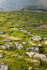 Descenso (un mar en calma) Tags: espaa verde azul puerto asturias roca rampa k10d pentaxk10d rivadesella objetivo1650f28edalldepentax