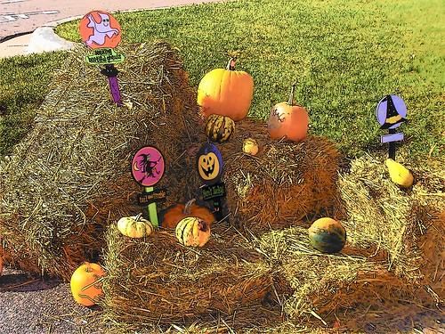 trunk treat pumpkin patch i-94HOMES