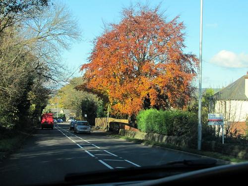 Trip to Harrogate 75