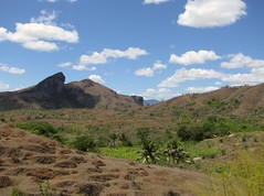 Andimaka from Ambodisatrana (David Darricau) Tags: africa mountain montagne bush madagascar 2010 afrique sugarcane brousse canneàsucre sirama