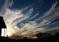 Cirrus uncinus cloud