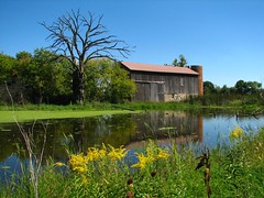 A bright red paint job would really stand out (ET Photo Home!) Tags: blue green water barn pond farm aplusphoto